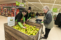 Colleagues Ross Barnes and Sharna Umar help Audrey Warwick pick a Bramley Apple