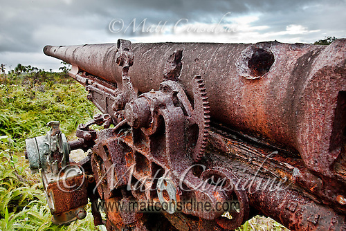 Damaged Anti Aircraft Gun from WWII, Yap Micronesia(Photo by Matt Considine - Images of Asia Collection) (Matt Considine)