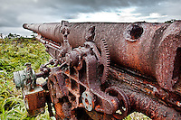 Damaged Anti Aircraft Gun from WWII, Yap Micronesia(Photo by Matt Considine - Images of Asia Collection)