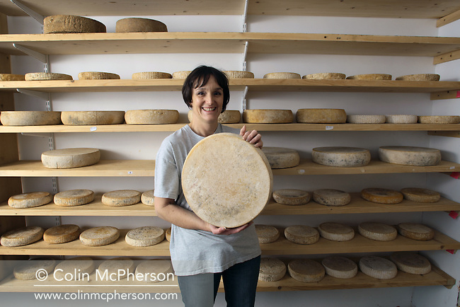 Cheesemaker Anne Connelly pictured holding an example of her award-winning artisan cheese at Larkton Hall Farm at Malpas in Cheshire, north-west England. Connelly makes two types of traditional cheeses by hand, Federia and Crabtree, and has won several awards for the product. She supplies chefs, shops and farmer's markets across the region.