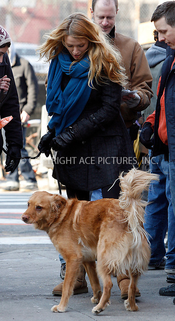 WWW.ACEPIXS.COM . . . . .  ....December 14 2011, New York City....Actress Blake Lively looks after Ryan Reynolds's Golden Retriever 'Baxter' on the Lower East Side set of the TV show Gossip Girl on December 14 2011 in New York City....Please byline: CURTIS MEANS - ACE PICTURES.... *** ***..Ace Pictures, Inc:  ..Philip Vaughan (212) 243-8787 or (646) 679 0430..e-mail: info@acepixs.com..web: http://www.acepixs.com