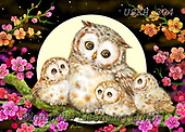 Kayomi, CUTE ANIMALS, LUSTIGE TIERE, ANIMALITOS DIVERTIDOS, paintings+++++,USKH304,#ac#, EVERYDAY ,#A#,realistic ,owl,owls