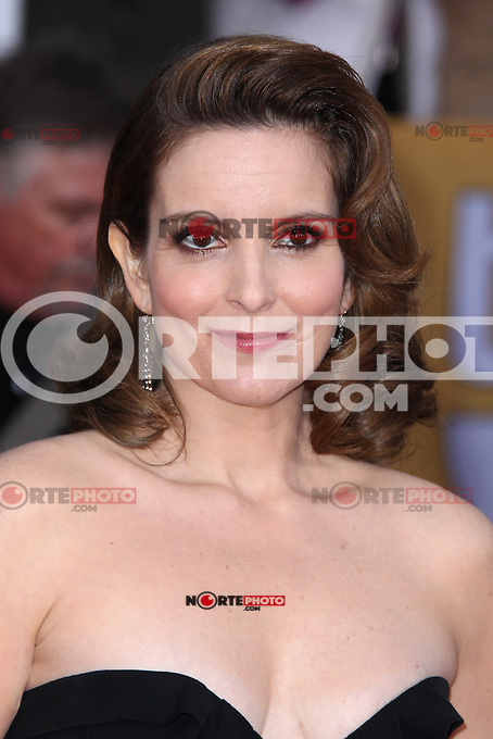 LOS ANGELES, CA - JANUARY 27: Tina Fey at The 19th Annual Screen Actors Guild Awards at the Los Angeles Shrine Exposition Center in Los Angeles, California. January 27, 2013. Credit: MediaPunch Inc.