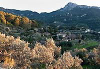 Spanien, Mallorca, bei Estellencs: Finca im letzten Sonnenlicht umgeben von Olivenbaeumen | Spain, Mallorca, near Estellencs: Finca surrounded by olive trees at last sunlight