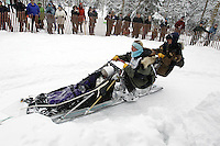 Saturday, March 3, 2012  Colleen Robertia handles her sled with ease at turn near Goose Lake during the Ceremonial Start of Iditarod 2012 in Anchorage, Alaska.