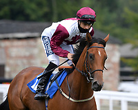 Sophie B ridden by Harry Bentley goes down to the start of  The Crouch's Down Maiden Auction Fillies Stakes during Horse Racing at Salisbury Racecourse on 13th August 2020