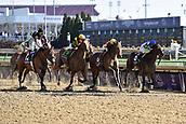 3rd November, 2018, Churchill Downs, Louisville, Kentucky, USA; Shamrock Rose (second from right) with Irad Ortiz jr up wins the Breeders Cup Filly and Mare Sprint. Churchill Downs racecourse.