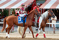 Sower in the post parade as Dream Tree (no. 8) wins the Prioress Stakes (Grade 2), Sep. 2, 2018 at the Saratoga Race Course, Saratoga Springs, NY.  Ridden by Mike Smith, and trained by Bob Baffert, Dream Tree finished 4 1/4 lengths in front of Mia Mischief (No. 4).  (Bruce Dudek/Eclipse Sportswire)