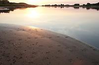Fußabdruck, Abdruck der Schwimmfüße einer Ente im Schlamm, Sand, Trittsiegel, Fußspur, Ufer, Vogelspur, Elbe, Elbeufer