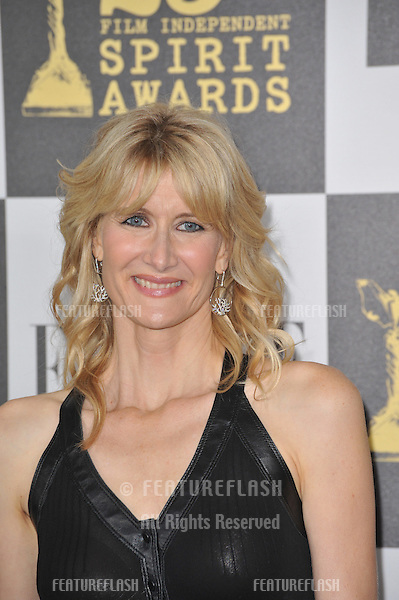 Laura Dern at the 25th Anniversary Film Independent Spirit Awards at the L.A. Live Event Deck in downtown Los Angeles..March 5, 2010  Los Angeles, CA.Picture: Paul Smith / Featureflash