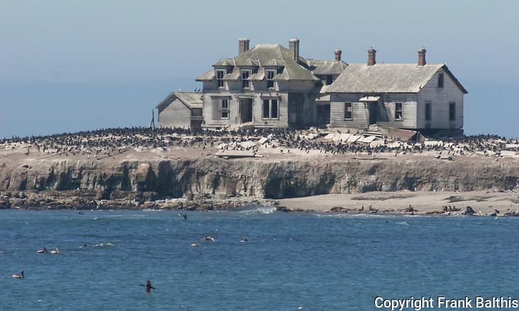 Lighthouse Keeper's house on Ano Nuevo Island