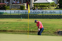 Jon Rahm (ESP) chips on to 18 during round 4 of the WGC FedEx St. Jude Invitational, TPC Southwind, Memphis, Tennessee, USA. 7/28/2019.<br /> Picture Ken Murray / Golffile.ie<br /> <br /> All photo usage must carry mandatory copyright credit (© Golffile | Ken Murray)