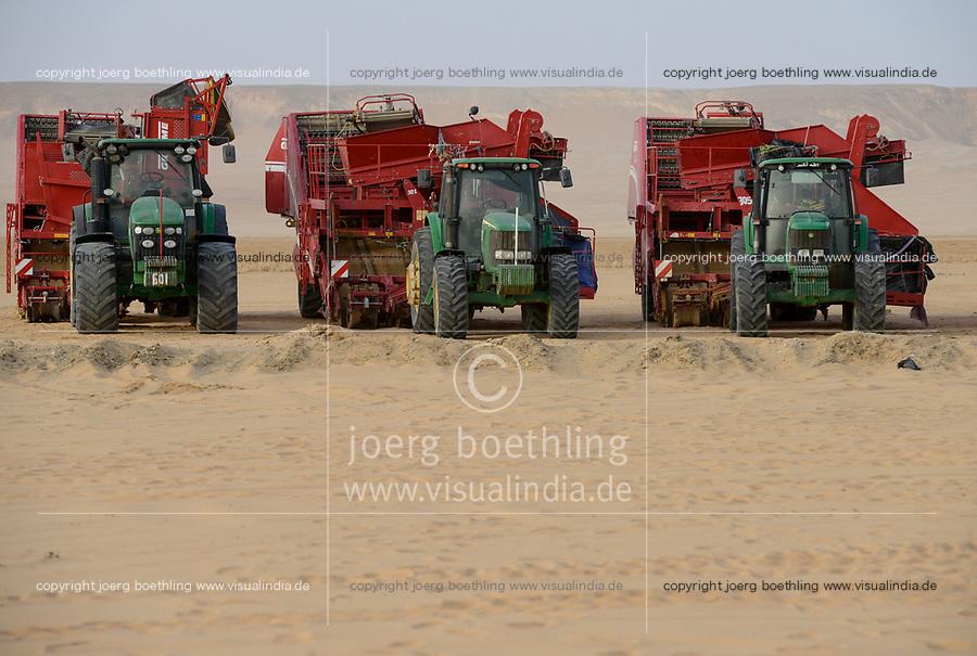 EGYPT, Farafra, potato farming in the desert, Daltex Corporation, John Deere tractors with Grimme harvesting machines/ AEGYPTEN, Farafra, Daltex Corporation, Kartoffelanbau in der Wueste