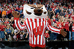 MADISON, WI - NOVEMBER 17: Mascot Bucky Badger of the Wisconsin Badgers cheers during the match against the Iowa Hawkeyes on November 17, 2006 in Madison, Wisconsin. (Photo by David Stluka)