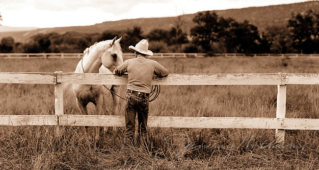 A cowboy leans against a fence to spend time with his horse