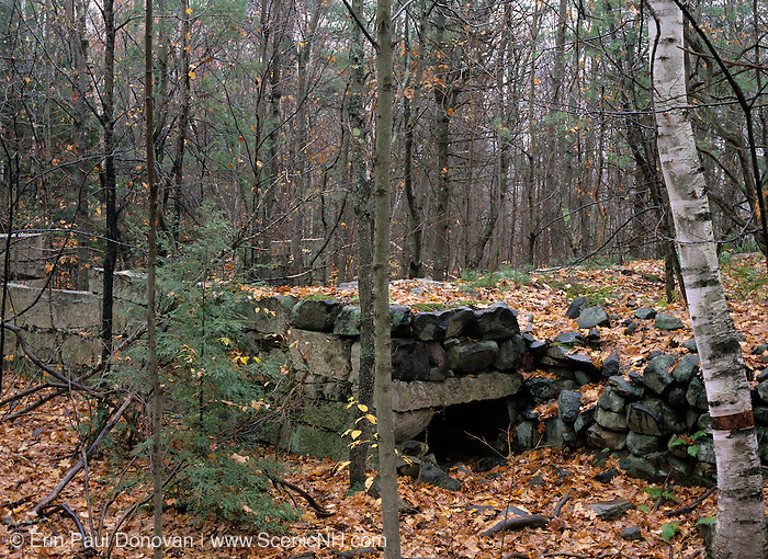 The remains of an abandoned granite foundation from the 19th - 20th century mountain settlement in the forest of Pawtuckaway State Park in Deerfield, New Hampshire USA