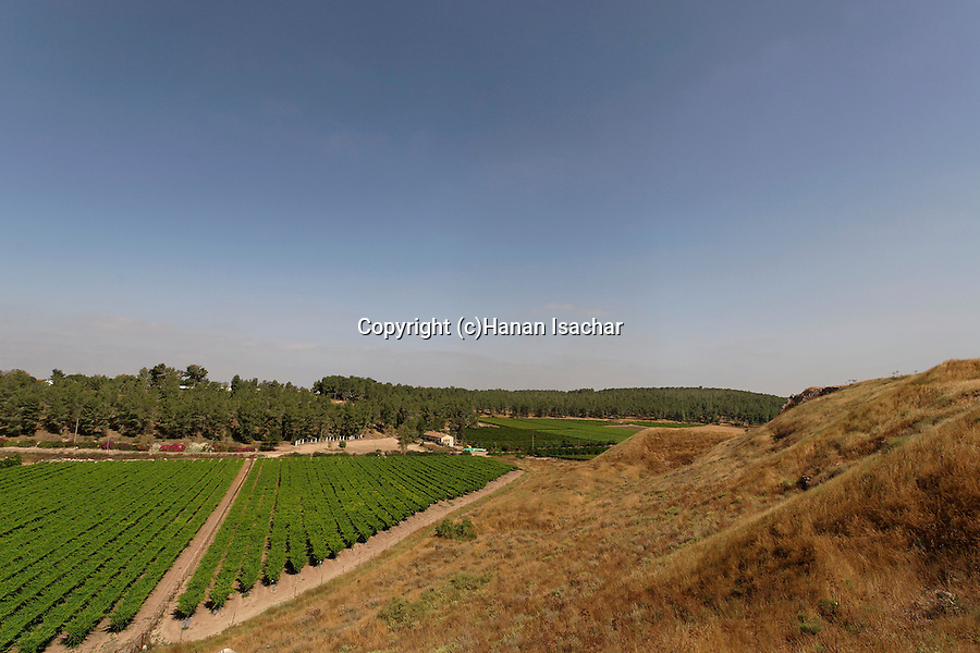 Israel, the Shephelah. A view northwest from Tel Lachish the site of the biblical Lachish
