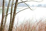 Europa, DEU, Deutschland, Baden-Wuerttemberg, Landkreises Saulgau, Bad Saulgau, Oberschwaben, Wagenhauser Weiher, Natur, Umwelt, Landschaft, Jahreszeiten, Stimmungen, Landschaftsfotografie, Landschaften, Landschaftsphoto, Landschaftsphotographie, Wetter, Wetterelemente, Wetterlage, Wetterkunde, Witterung, Witterungsbedingungen, Wettererscheinungen, Meteorologie, Wettervorhersage, <br /> <br /> [Fuer die Nutzung gelten die jeweils gueltigen Allgemeinen Liefer-und Geschaeftsbedingungen. Nutzung nur gegen Verwendungsmeldung und Nachweis. Download der AGB unter http://www.image-box.com oder werden auf Anfrage zugesendet. Freigabe ist vorher erforderlich. Jede Nutzung des Fotos ist honorarpflichtig gemaess derzeit gueltiger MFM Liste - Kontakt, Uwe Schmid-Fotografie, Duisburg, Tel. (+49).2065.677997, ..archiv@image-box.com, www.image-box.com]