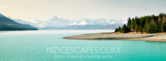 Lake Pukaki with its turquoise colours caused by the glacial sediments. Mt. Cook 3754m dominates the horizon - Mackenzie Country, New Zealand