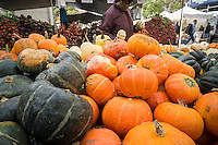Pumpkins and other gourds for sale in the Union Square Greenmarket in New York on Wednesday, October 12, 2016. Supplies of pumpkins are expected to be able to meet this year's demands as opposed to last year when the fear of a pumpkin shortage gripped the nation.  (© Richard B. Levine)