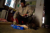 Volunteers feed cats in a small farmhouse at Ha Wenjin's no-kill dog and cat rescue farm outside Nanjing, Jiangsu, China.