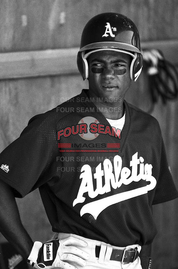 Miguel Tejada of the Modesto Athletics at Mavericks Stadium in Adelanto,California during the 1996 season. (Larry Goren/Four Seam Images)