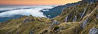 Views towards Tasman Sea from Mount Fox at dawn Westland Tai Poutini National Park, West Coast, South Westland, UNESCO World Heritage Area, New Zealand, NZ
