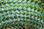 tressage de feuilles de cocotier