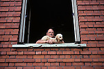 Man & Dog In Window