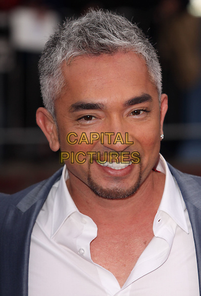 CESAR MILLAN.'The Back-Up Plan' Premiere Mann Village Theatre, Los Angeles, California, USA..21st April 2010.headshot portrait facial hair goatee white grey gray.CAP/ADM/GW.©Glenn Weiner/AdMedia/Capital Pictures.