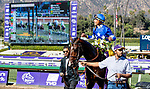 November 1, 2019: Structor, ridden by Jose Ortiz, wins the Breeders' Cup Juvenile Turf on Breeders' Cup World Championship Friday at Santa Anita Park on November 1, 2019: in Arcadia, California. Casey Phillips/Eclipse Sportswire/CSM
