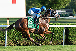 September 05, 2020: Rinaldi #5, ridden by Luis Saez, trained by  H. Bond  wins the West Point S. at Saratoga Race Course in Saratoga Springs, New York. Rob Simmons/CSM