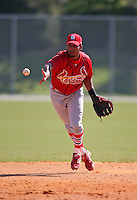 March 19, 2010:  Second Baseman Ted Obregon of the St. Louis Cardinals organization during Spring Training at the Roger Dean Stadium Complex in Jupiter, FL.  Photo By Mike Janes/Four Seam Images