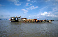 CAMBODIA, River Mekong, transport of timber on river freight ships / KAMBODSCHA, Fluss Mekong, Transport von Tropenholz auf Flussschiffe