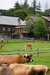 Billings Farm, Woodstock, Vermont
