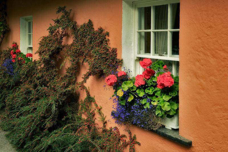 Flower garden and window. Bunratty Castle, ireland
