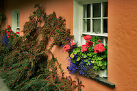 Flower garden and window. Bunratty Castle, ireland