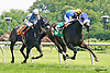 Tuffy's Lucky winning at Delaware Park on 7/20/16