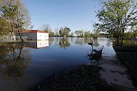 Mississippi River floodwater recedes from the Red Star District of Cape Girardeau, MO, on Wednesday, May 4, 2011. Since the Birds Point levee was intentionally breached by the Army Corps of Engineers on Monday, May 2, 2011, the Mississippi River floodwater have receded at least two feet, according to resident Peggy Benaivdz.