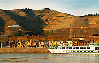 A view across the river from Tournon with a river cruise boat moored in Tain. The Hermitage vineyards on the hill behind the city Tain-l'Hermitage, on the steep sloping hill, stone terraced. Sometimes spelled Ermitage. Tain l'Hermitage, Drome, Drôme, France, Europe