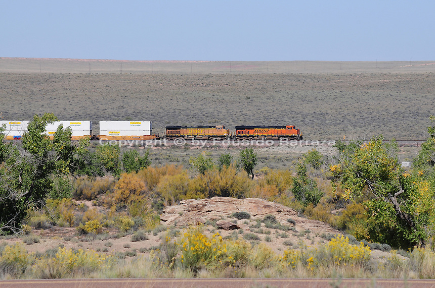 Navajo County, Arizona – The legendary Santa Fe Railroad crosses through the Painted Desert area at the Petrified Forest National Park.  The Santa Fe Railroad first came through northern Arizona in 1882. The Painted Desert is a broad region of rocky badlands featuring unique rocks in a variety of hues - lavenders, grays, reds, oranges and pinks. Located in Northeastern Arizona, the Painted Desert attracts hundreds of thousands a visitors each year. Photo by Eduardo Barraza © 2014