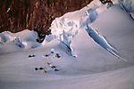 Camp near Gilbralter Rock, Mount Rainier