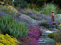 Stepping stone path through drought tolerant summer-dry Northwest hillside garden with rosemary, lavenders, heather and glazed ceramic cat as focal point; Albers Vista Gardens