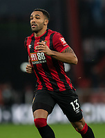 Bournemouth's Callum Wilson <br /> <br /> Photographer David Horton/CameraSport<br /> <br /> The Premier League - Bournemouth v Wolverhampton Wanderers - Saturday 23rd November 2019 - Vitality Stadium - Bournemouth<br /> <br /> World Copyright © 2019 CameraSport. All rights reserved. 43 Linden Ave. Countesthorpe. Leicester. England. LE8 5PG - Tel: +44 (0) 116 277 4147 - admin@camerasport.com - www.camerasport.com