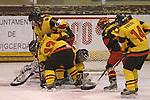 01.04.2013 Puigcerda, Spain. IIHF Ice Hockey Women's World Championship Div II Group B.  Game between Spain against Belgium