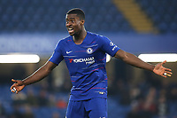 Marc Guehi of Chelsea during Chelsea Under-23 vs Arsenal Under-23, Premier League 2 Football at Stamford Bridge on 15th April 2019