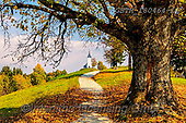 Tom Mackie, LANDSCAPES, LANDSCHAFTEN, PAISAJES, photos,+Europa, Europe, European, Jamnik, Slovenia, Tom Mackie, autumn, autumnal, church, churches, country lane, destination, destin+ations, dramatic outdoors, fall, footpath, horizontal, horizontals, landscape, landscapes,mood, moody, path, pathway, pathway+s, road, scenery, scenic, tourist attraction, track, travel,Europa, Europe, European, Jamnik, Slovenia, Tom Mackie, autumn, a+utumnal, church, churches, country lane, destination, destinations, dramatic outdoors, fall, footpath, horizontal, horizontal+,GBTM180464-1,#l#, EVERYDAY