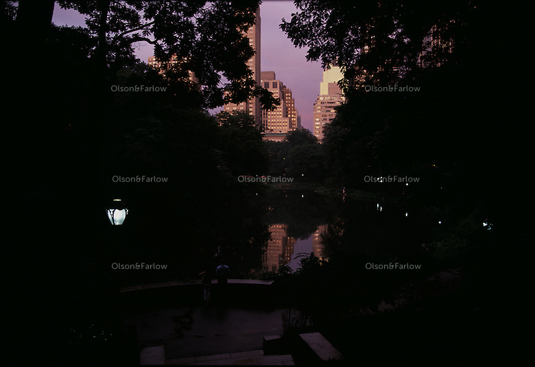 Central park night time view .