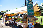 Maui, Hawaii.  The Ono Farm stand in Hana, Maui.