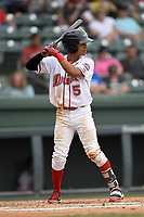 Right fielder Lorenzo Cedrola (5) of Greenville Drive bats in a game against the Hickory Crawdads on Sunday, July 16, 2017, at Fluor Field at the West End in Greenville, South Carolina. Hickory won, 3-1. (Tom Priddy/Four Seam Images)
